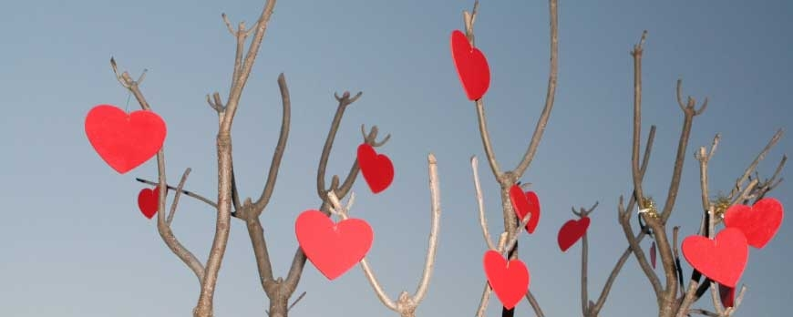 5 Ideas para decorar vuestro jardín para San Valentín